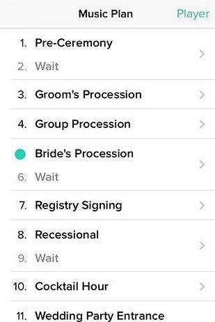 instead of hiring a dj or a band get this handy wedding dj app