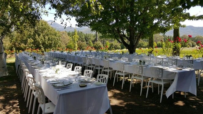 Winery wedding! Beautiful night for an outdoor reception with Mount Buffalo as a back drop!