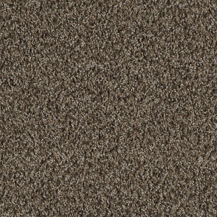 Derby Tones Multi By Resista Soft Style From Carpet One