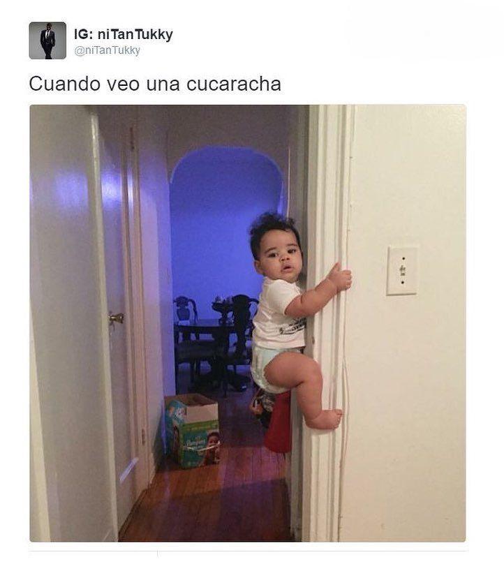 La cucarachaaa ... La cucarachaaaa ... ya no puede ... #memes #chistes #chistesmalos #imagenesgraciosas #humor http://www.megamemeces.com/memeces/imagenes-de-humor-vs-videos-divertidos