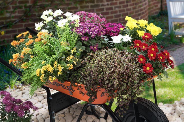 109 best images about dise a tu jard n on pinterest for Jardineria en casa