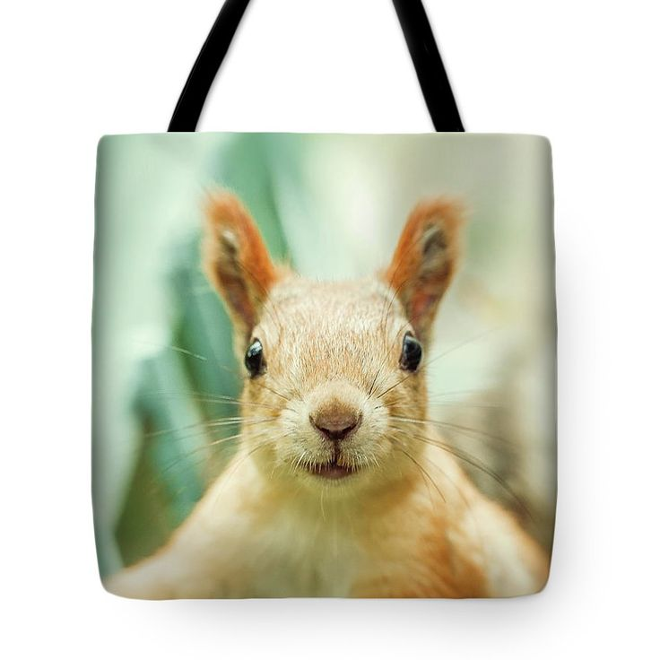 Cute Tote Bag featuring the photograph Face Of Cute Squirrel by Oksana Ariskina for children and kids. Cute and funny wild animals! #OksanaAriskina #Squirrel #WildAnimal Available as poster, greeting card, phone case, throw pillow, framed fine art print, metal, acrylic or canvas print with my fine art photography online: www.oksana-ariskina.pixels.com