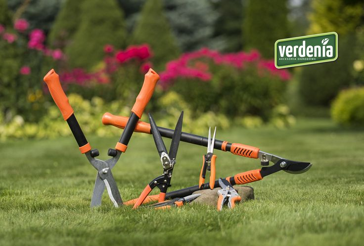 #sekator #ogród #garden #pruning scissors
