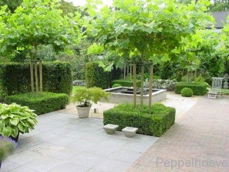 Peppelhoeve tuin in balans met terras halfverharding en waterelement tuin 2016 pinterest - Hoe aangelegde tuin ...