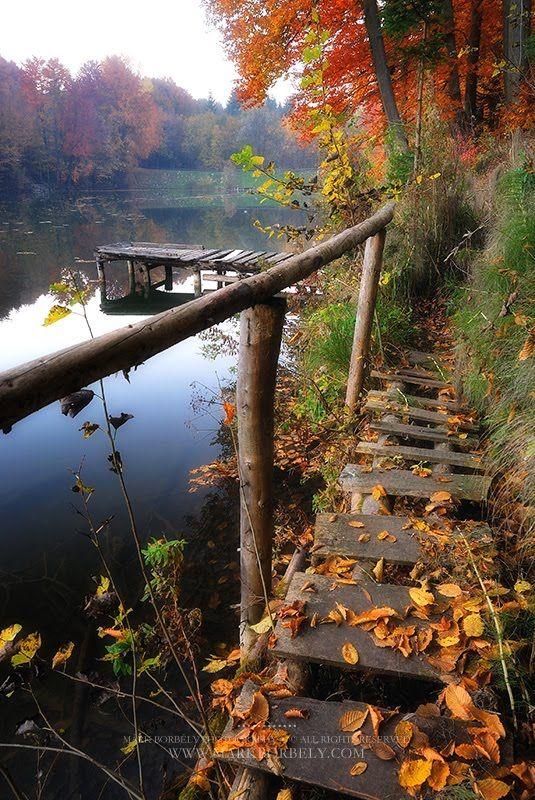 ~Autumn. Bakony,  Hungary by Mark Borbely~