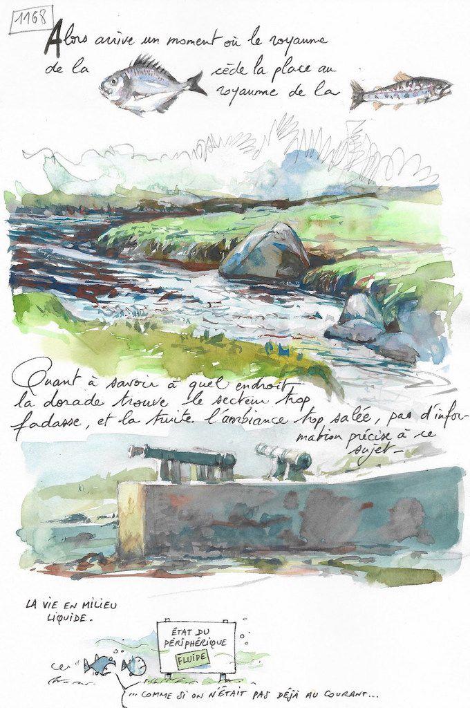 Une Bretagne par les Contours / Rives de l'Aber Ildut