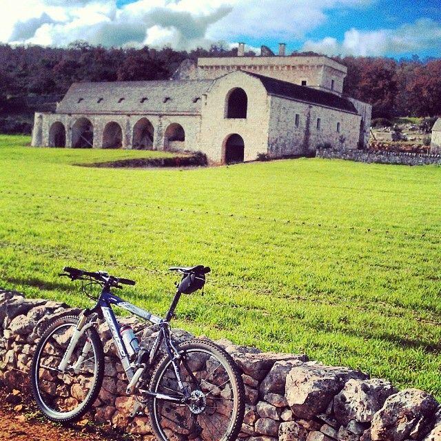 .@cenzointermite | Riscoprire la propria terra ti fà capire di esser fortunati #Puglia #WeAreInPuglia
