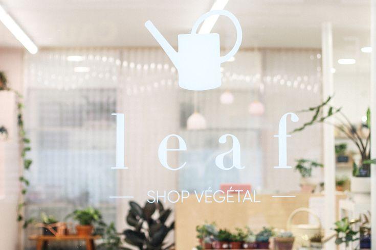 Leaf, shop végétal (Paris 10e) © Les Jolis Mondes