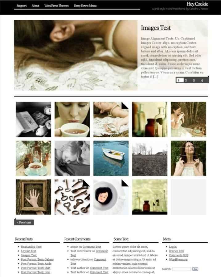 Wordpress шаблоны для портфолио фотографа