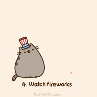 5:5 - How to celebrate on the 4th of July .gif