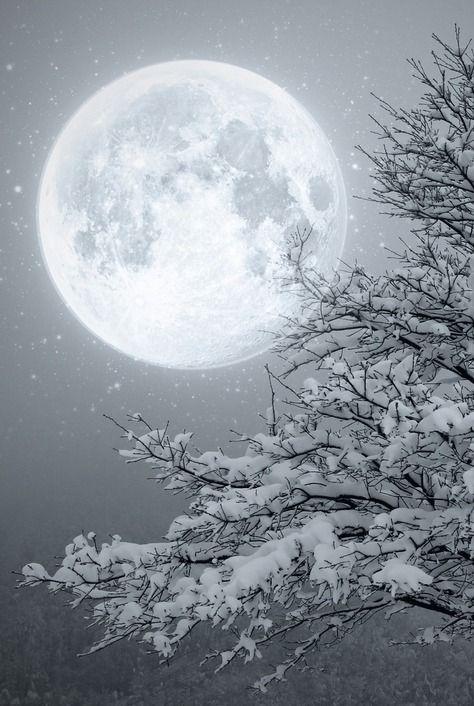 Winter Moon light