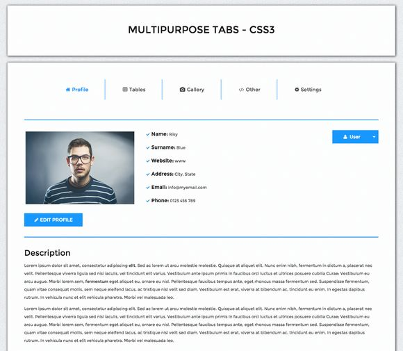 Multipurpose Tabs - CSS3 by RikyBlue on Creative Market