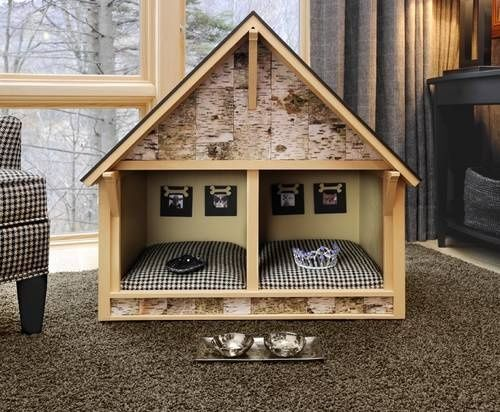 Double dog house cute dog houses pinterest for Double dog house for large dogs