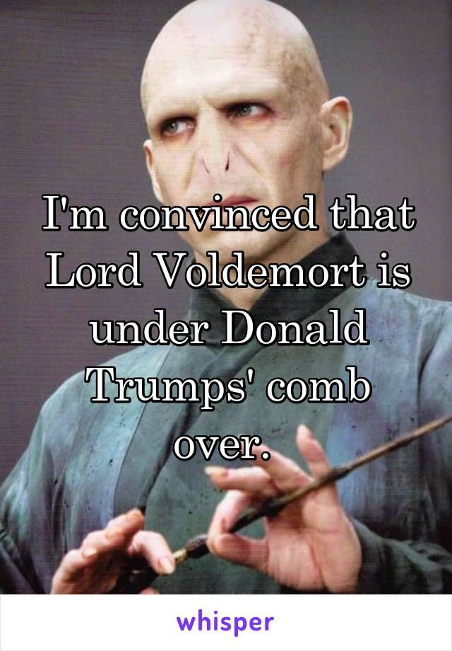 I'm convinced that Lord Voldemort is under Donald Trumps' comb over.