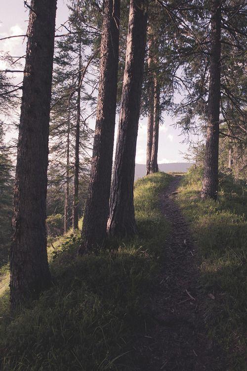 Run here.