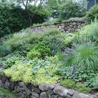 17 best ideas about steep hillside landscaping on for Garden designs for slopes
