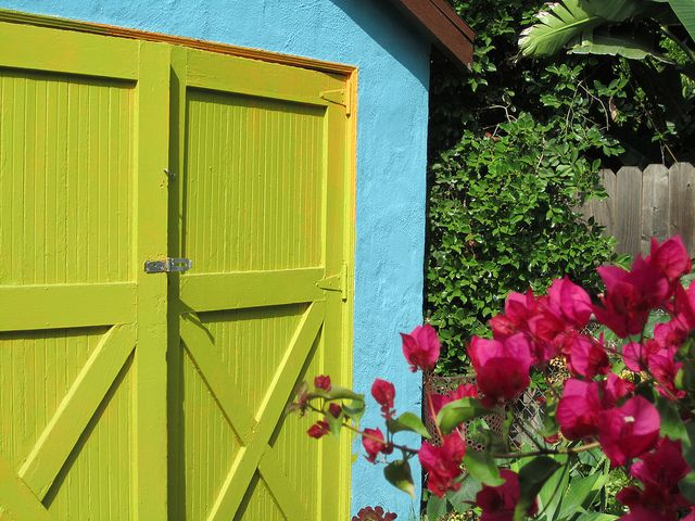 Painted Shed
