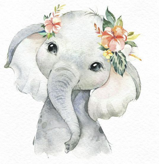 Kunst – Afrika Zebra Elefant Löwe Aquarell Kleintiere Clipart, Babys Porträt Simba Cub Kranz Blumen, süße Kinder, Kinderzimmer Kunst, Babyshower   – Tiere Bilder