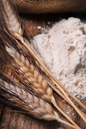 Health Benefits of Oat Straw : Underground Health Reporter