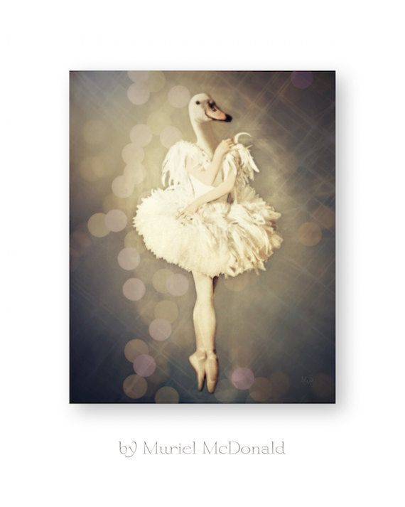 """Ballet Wall Art, Swan Lake, Anthropomorphic, Mixed Media Collage Photography, Nursery Decor, Dance Gifts, 8 x 10 """"The Swan Princess"""""""