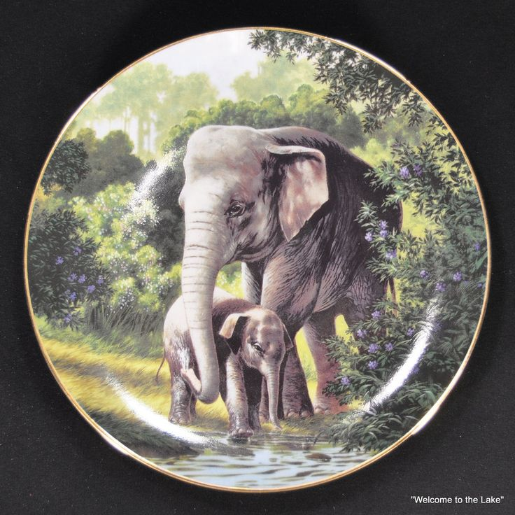 THE WILDLIFE SOCIETY - 10 Limited Edition Plates by Will Nelson #TheWildlifeSociety