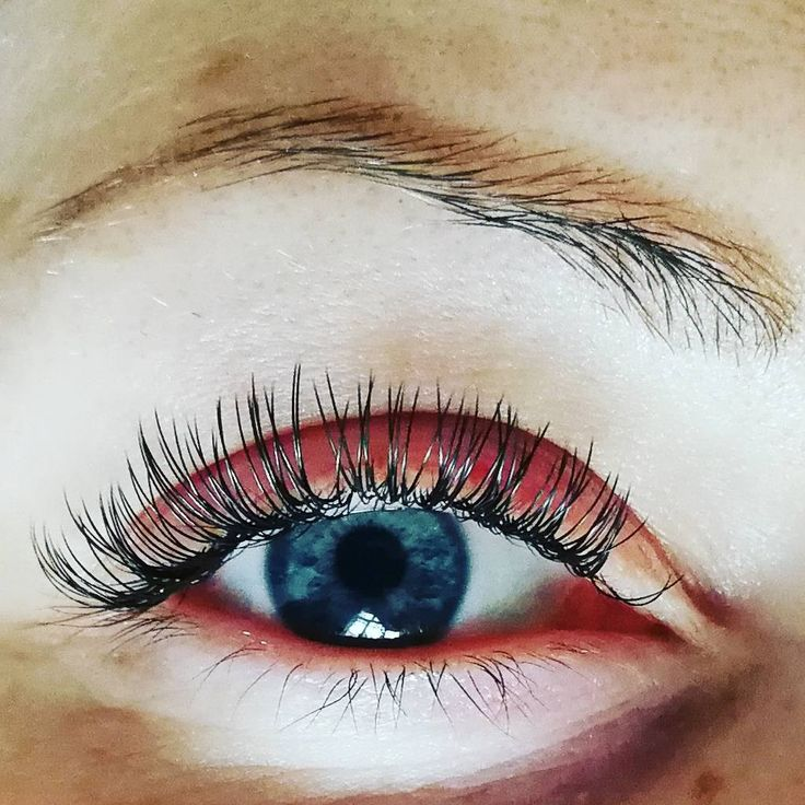 Individual eyelash extensions, Mystique lashes, natural ...