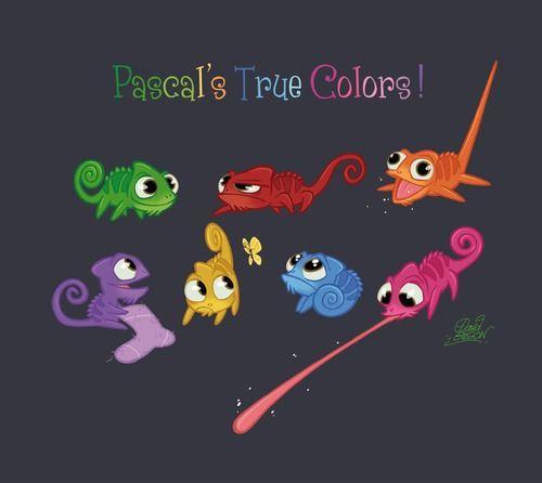 Pascal's True Colors!