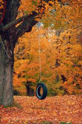 Maine-fall-foliage