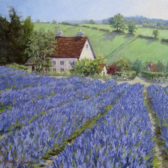Lavender Carpet: painting of England Painting of Cotswolds, England. While traveling with friends who knew this area well, drove to this matured, expansive lavender farm. This is just one spot from the 360 degree view of what was a huge rising hill filled with fragrance and enormous mounds of lavender. Oil on linen. $5000.