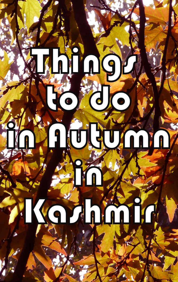 Autumn in Kashmir, India.