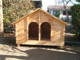 Casa doble de perro