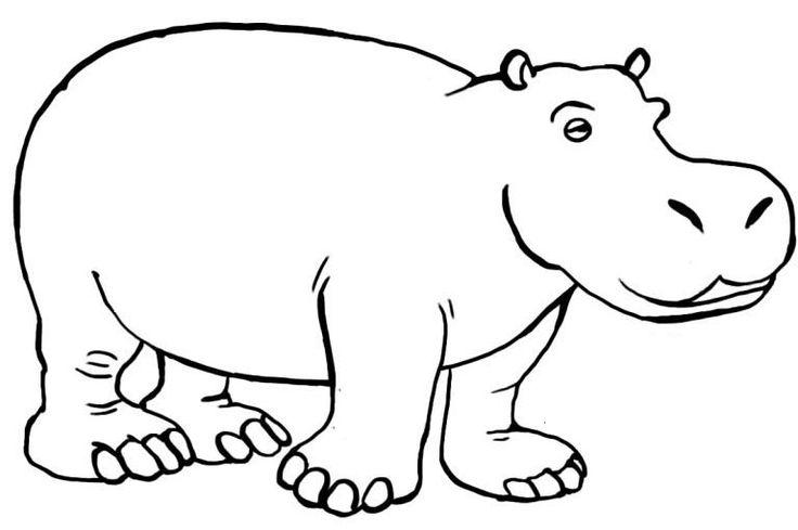 Hippo's The Body Fat