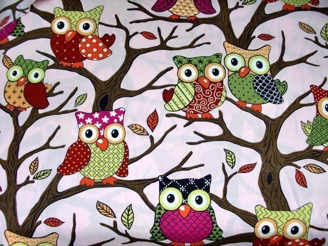 owl decor for bedroom 1943 best şirin şeyler sweet things images on 16584
