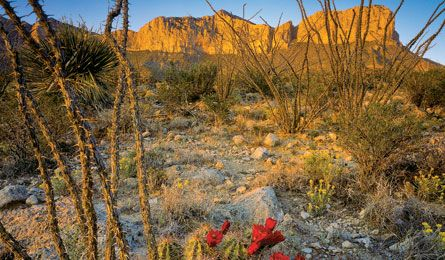 Secret Hikes in the Guadalupe Mountians