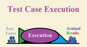 <b>Test Case Execution</b>