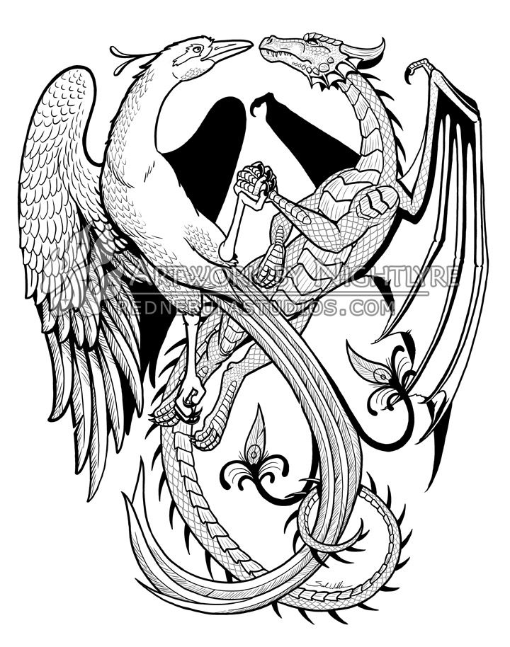 Phoenix And Dragon Drawings Galleryhipcom The Hippest