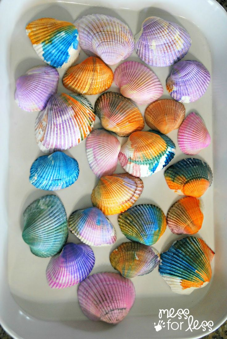 Painting shells with liquid watercolors. Such an easy and fun way to decorate collected seashells. #sponsored