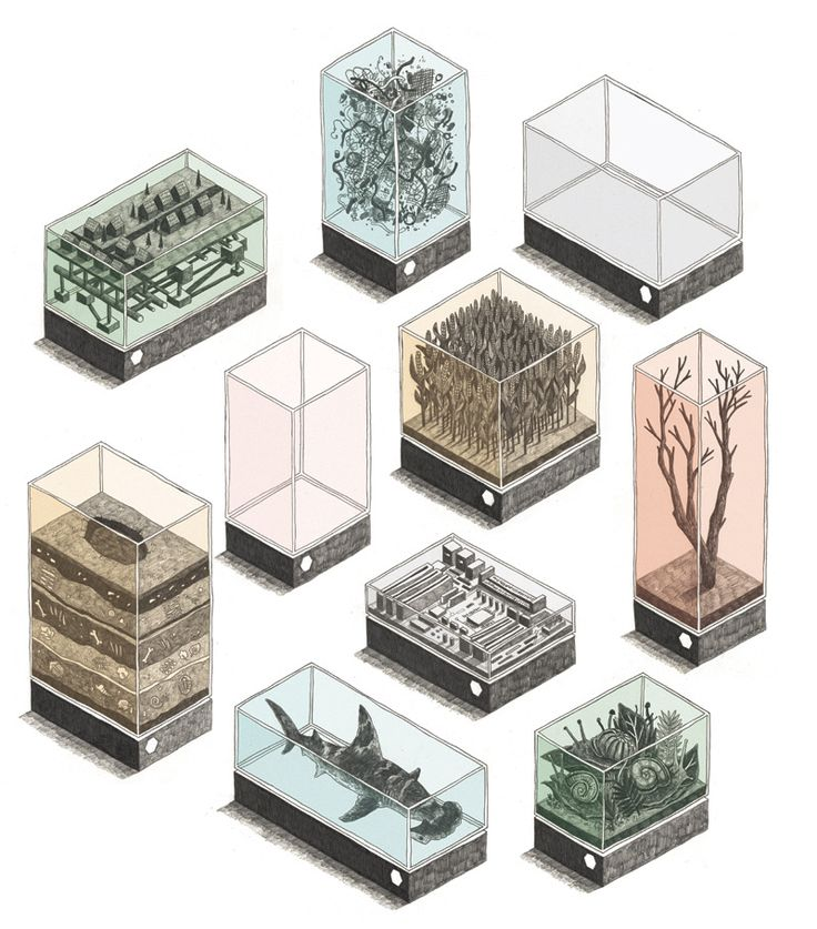 A series of drawings by English artist, illustrator & animator Jamie Mills show commodified fragments of fauna and flora exhibited as art-pieces in Damien Hirst-like vitrines.