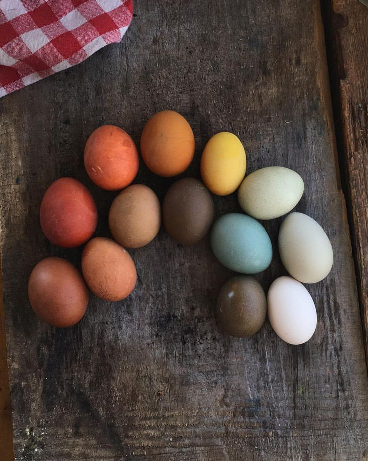 Eggs pulled from their overnight dyes, all natural food-based dyed but I'm gonna guess you knew that. The sun is out and we've got plans to…
