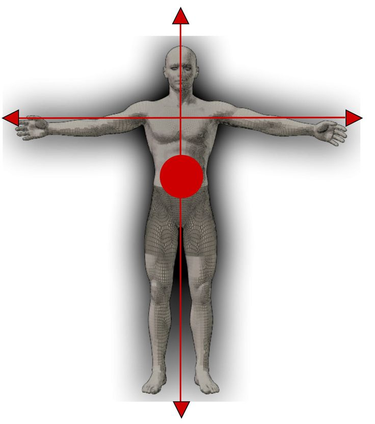 The Integrated Body ®: The Fascinating Science of Connective Tissue