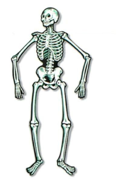 22 jointed skeleton halloween decor paper cut out - Skeleton Decorations