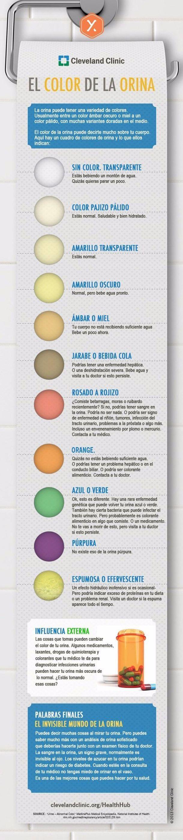 Los diferentes colores de orina #infografias #salud #orina