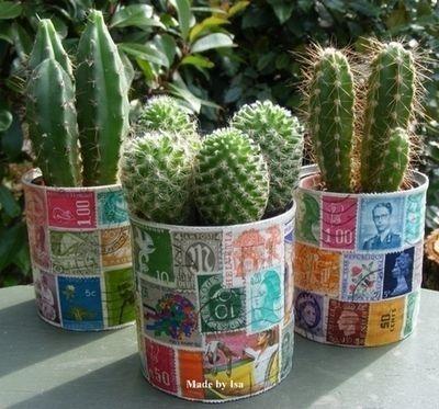 Plantar los cactus en latas recicladas con sellos...