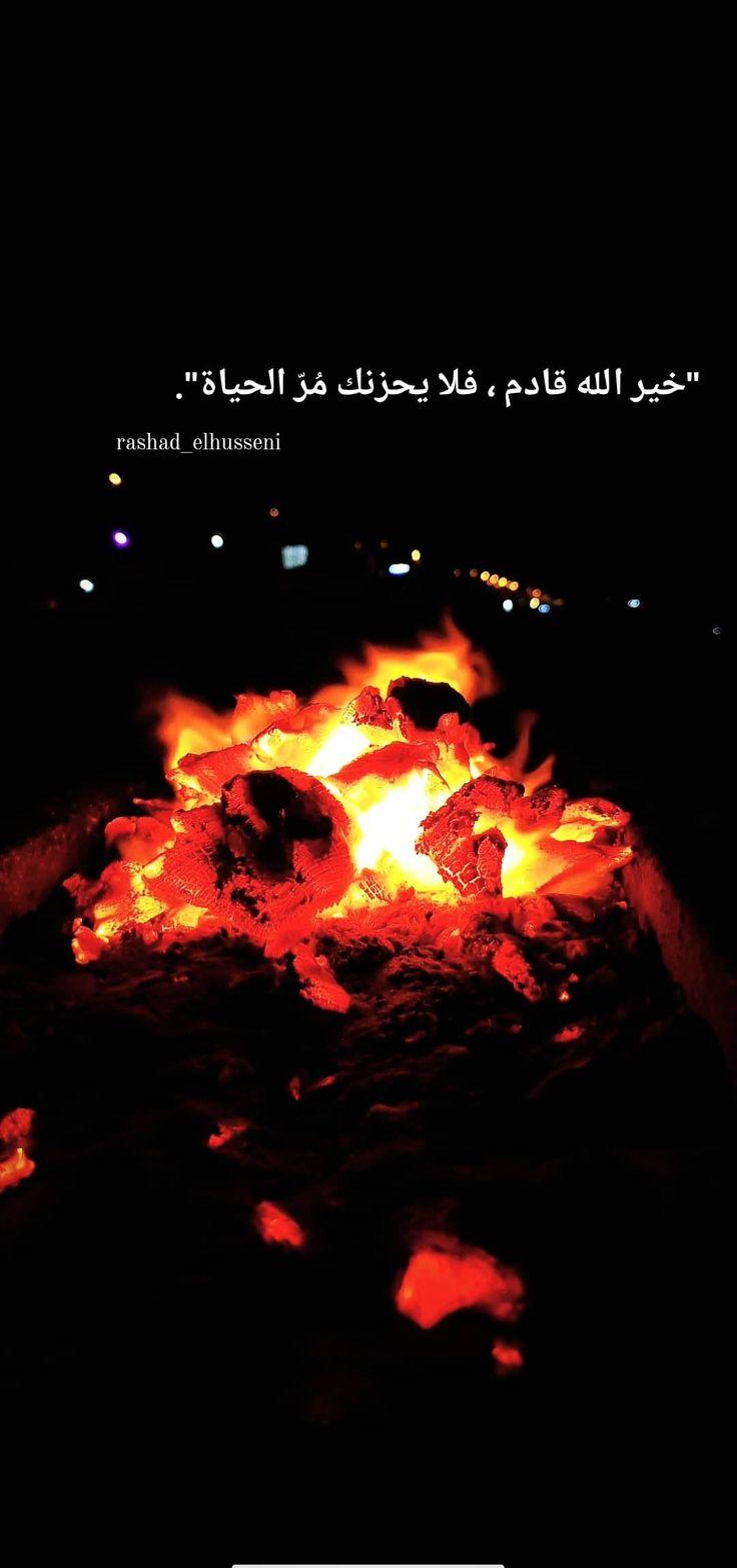 ورد أصفر طبيعة شجر اصفر غزة طبيعة جميل فلسطين القدس كلام تصوير صور ابيض صباح خير صل