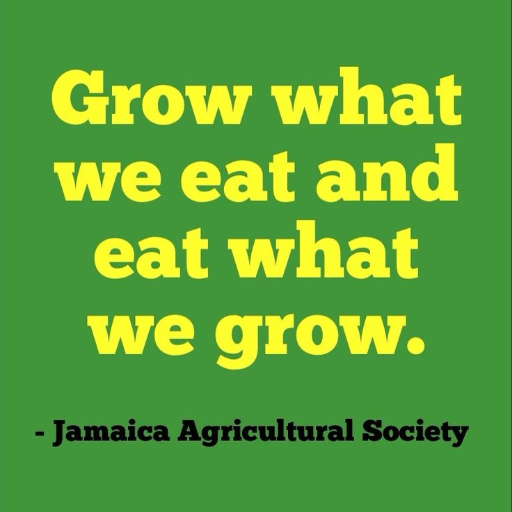"""Jamaica's """"Grow what we eat and eat what we grow"""" campaign is just common sense. Buy food from local farmers when you can!"""
