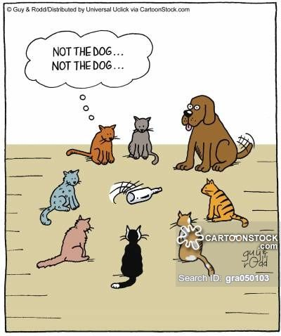 Sunday Funnies Our Favorite Funny Dog Cartoons and Comics ...