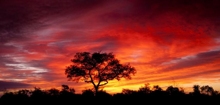 south african sunset - Google Search