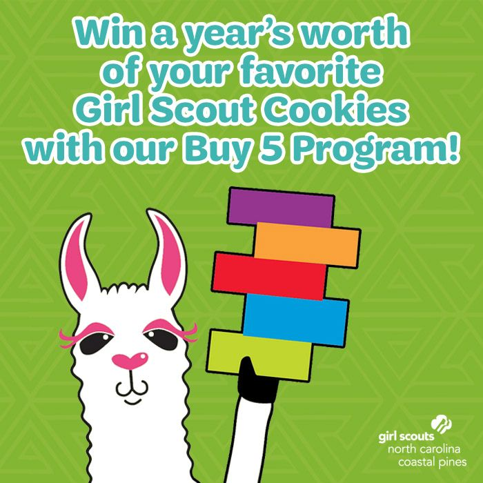 How the Girl Scouts built their $700 million cookie empire