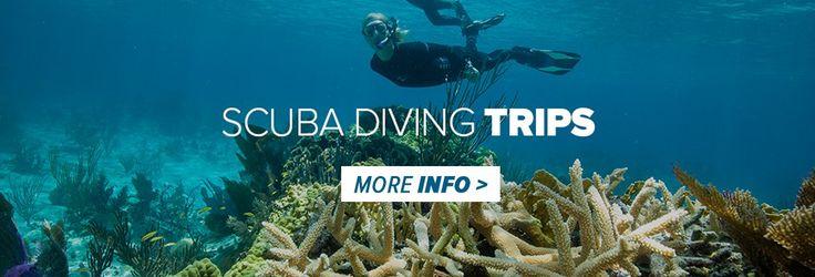 ADRENO Scuba Diving Centre   ADRENO Scuba Diving Centre