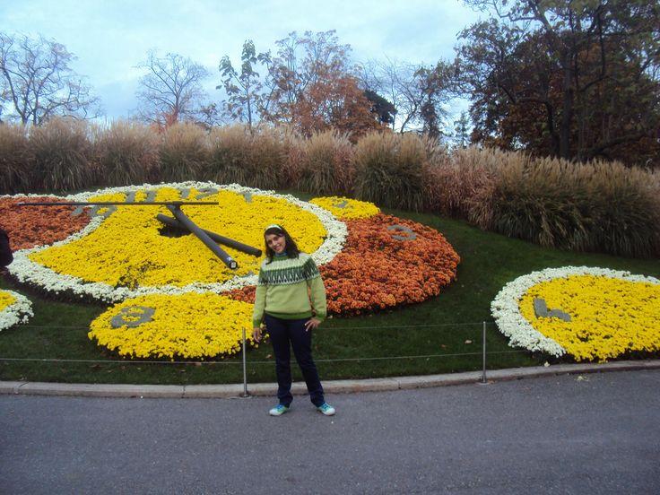 Reloj Floral Ginebra-Fotografía: Cecilia Marin